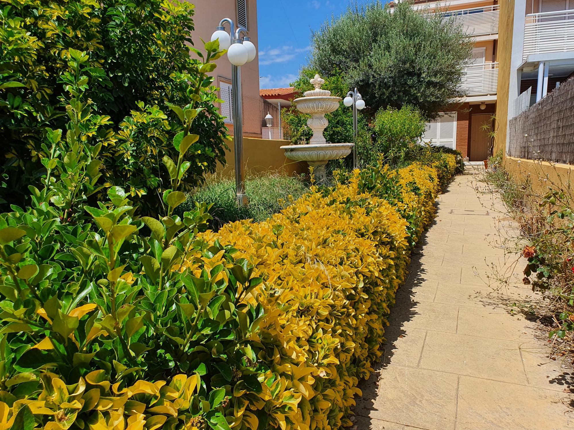 Vivienda unifamiliar en Burriana (Castellón) zona Puerto